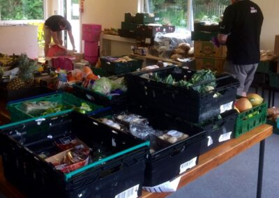 SFH: Food collection 2